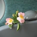 IMG_3669 άγριο τριαντάφυλλο
