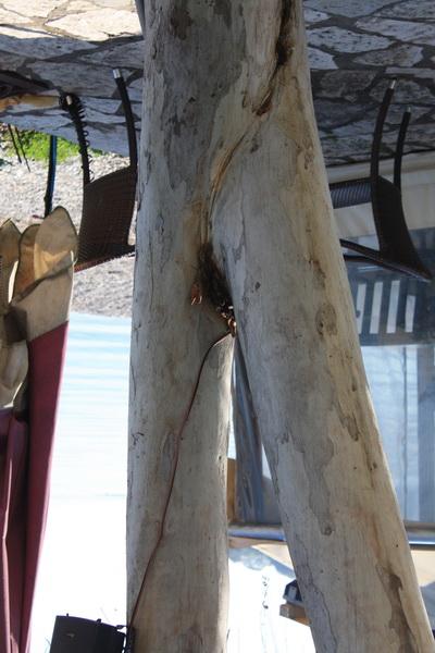 Δέντρο πόδια
